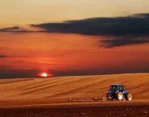 kmetovanje