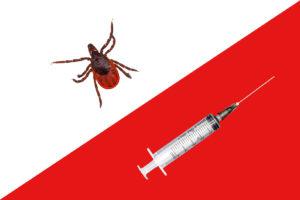 Cepljenje proti klopom